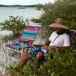 Relaxing in The Mangroves